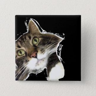 Flaumig gibt es lustiger Katzen-Quadrat-Knopf Quadratischer Button 5,1 Cm
