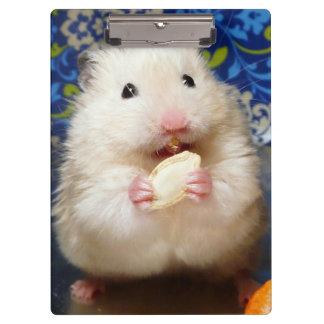 Flaumiger syrischer Hamster Kokolinka, das einen Klemmbrett