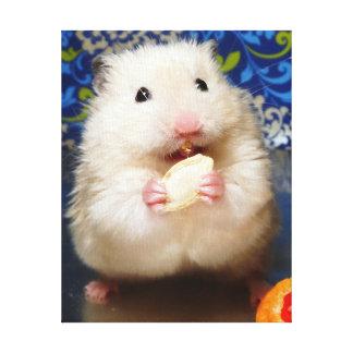 Flaumiger syrischer Hamster Kokolinka, das einen Leinwanddruck
