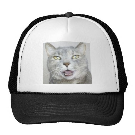 flaumiger unglaublich witzig offener Meow Mund der Mütze