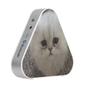Flaumiges Sasquach, das Kitty mit niedlichem Bluetooth Lautsprecher