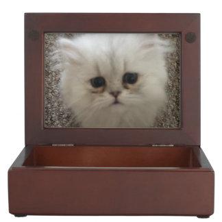Flaumiges Sasquach, das Kitty mit niedlichem Erinnerungsdosen