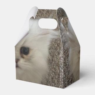 Flaumiges Sasquach, das Kitty mit niedlichem Geschenkkarton