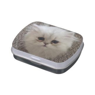 Flaumiges Sasquach, das Kitty mit niedlichem Jelly Belly Dose