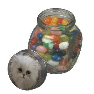 Flaumiges Sasquach, das Kitty mit niedlichem Porzellanbehälter
