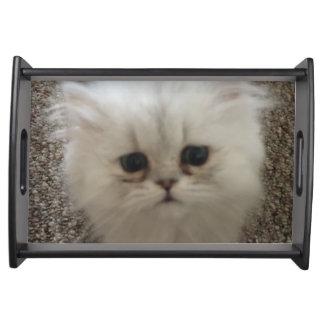 Flaumiges Sasquach, das Kitty mit niedlichem Tablett