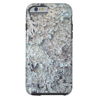 Flechte, die in einem kleinen Stand der Bäume Tough iPhone 6 Hülle