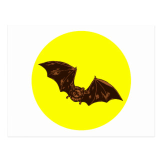 Fledermaus bat postkarte