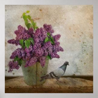 Fliedern in einem alten rostigen Eimer Poster