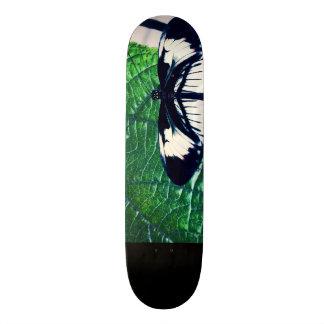 Fliege im Wind 20,6 Cm Skateboard Deck