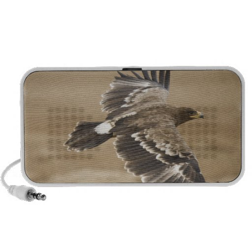 Fliegen-Adler-Vogel-Lautsprecher