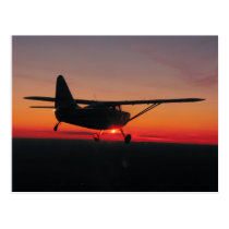 Fliegen in die Sonnenuntergangpostkarte Postkarten