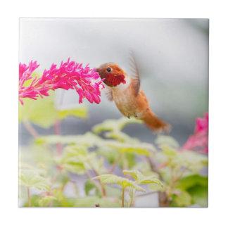 Kolibris fliesen for Blumen fliegen