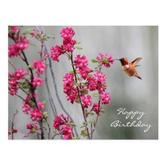Fliegenkolibris geschenke for Blumen fliegen