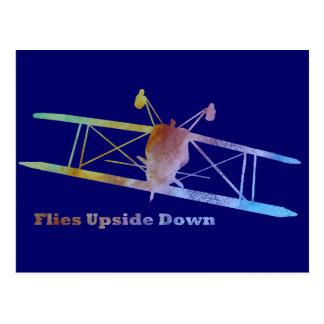 Fliegen-Oberseite - bremsen Sie unten Flugzeug Postkarte