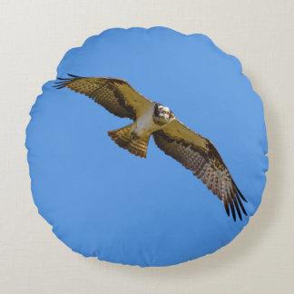 Fliegen Osprey mit einem Ziel im Anblick Rundes Kissen