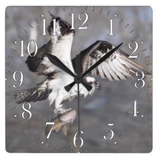 Fliegen-Osprey-u. Fisch-Tier-Foto-Szene 2 Quadratische Wanduhr