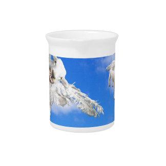 FLIEGEN-SCHAFE 5 KRUG