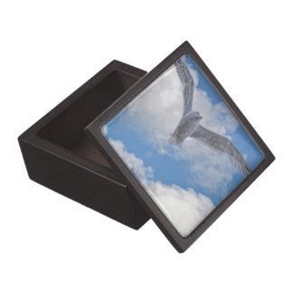 Fliegen-Seemöve u. -wolken Kiste