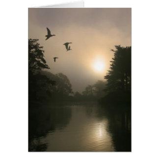 Fliegen-Stockenten und Morgen-Nebel Karte