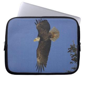 Fliegen-Weißkopfseeadler Tier-Anhänger Kunst Laptop Sleeve
