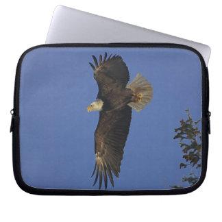 Fliegen-Weißkopfseeadler Tier-Anhänger Kunst Laptopschutzhülle