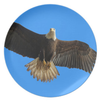 Fliegen-Weißkopfseeadler-Tier-Geschenk Flacher Teller