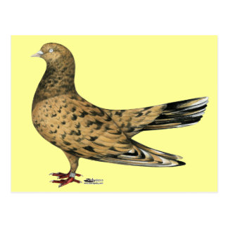 Fliegende orientalische Rolle:  Mandel Postkarte