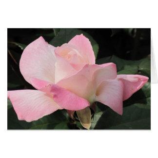 Fliegende rosa Rose Karte