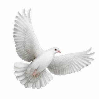 Fliegende Tauben-Verzierung Fotoskulptur Ornament
