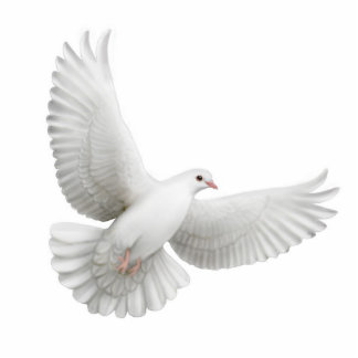 Fliegende Tauben-Verzierung Fotostatue