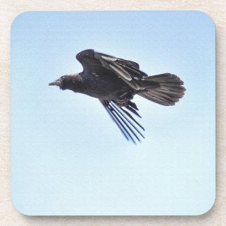 Fliegender Rabe Foto-dem Entwurf in des blauen Getränkeuntersetzer