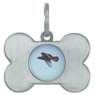 Fliegender Rabe Foto-dem Entwurf in des blauen Tiermarke