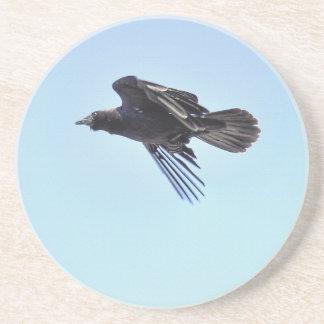 Fliegender Rabe Foto-dem Entwurf in des blauen Untersetzer