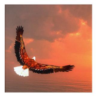 Fliegendes Eagle - 3D übertragen Acryl Wandkunst