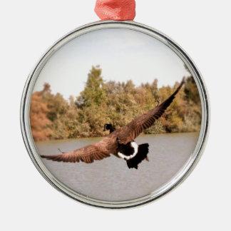 Fliegenente über Wasserphotographie Silbernes Ornament