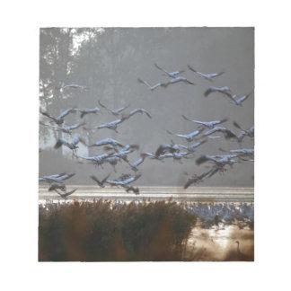 Fliegenkräne auf einem See Notizblock