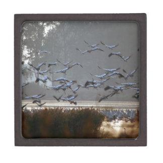 Fliegenkräne auf einem See Schachtel
