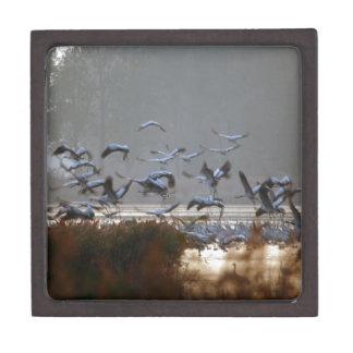 Fliegenkräne Kiste