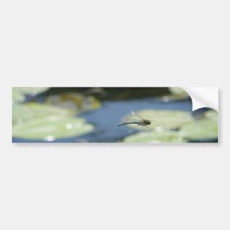 Fliegenlibelle Autoaufkleber