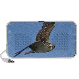 Fliegenosprey-Lautsprecher