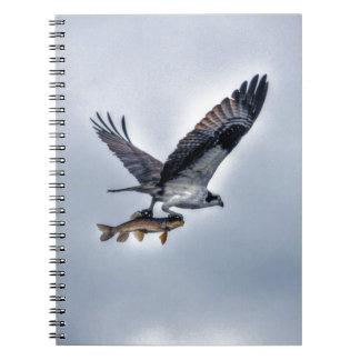 FliegenOsprey mit Foto der Hornhautfleck-Fisch-HDR Notizblock