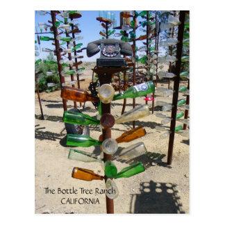 Flippige Flaschen-Baum-Ranch-Postkarte! Postkarte