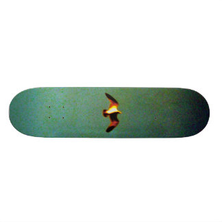 Flite 19,1 Cm Old School Skateboard Deck