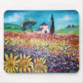 FLORA AUF TOSKANAgebieten, -mohnblumen und Mousepad
