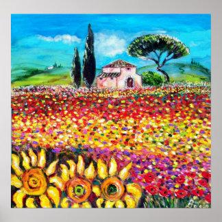 FLORA AUF TOSKANAgebieten, -mohnblumen und Poster