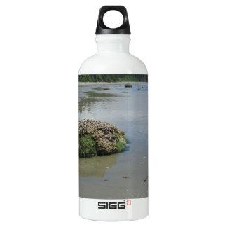 Florencia Bucht-Strand 1 Aluminiumwasserflasche