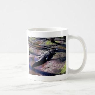 Florida-Alligator Kaffeetasse