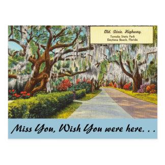 Florida, alte Dixie Landstraße, Daytona Beach Postkarte