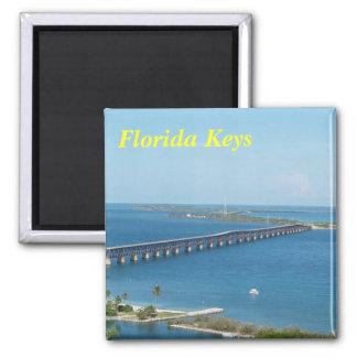 Florida befestigt Magneten